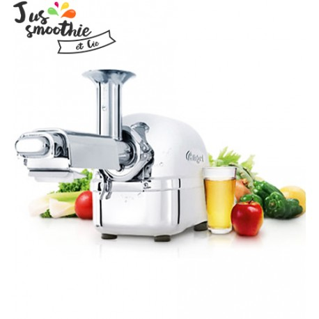 l 39 extracteur de jus angel 7500 juicer professionnel haut rendement. Black Bedroom Furniture Sets. Home Design Ideas